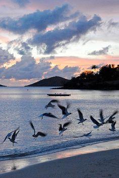 Caneel Bay Sunset, Virgin Islands National Park