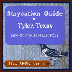 Staycation ideas for the Tyler and surrounding East Texas areas. Great for families!