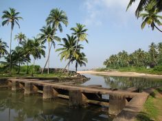 The best time to visit Valapattanam backwaters is from October to March to experience the beautiful beaches of backwaters down in Kerala Andaman And Nicobar Islands, Kerala India, South India, India Travel, India Trip, Travel Channel, Fishing Villages, Incredible India, Goa