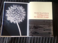 Michel Houellebecq - Configuration du dernier rivage  In love with. Sta