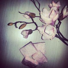 Magnolia Soaps