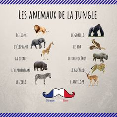 Learn French For Kids Free Printable Printing Car Motors Basic French Words, French Phrases, How To Speak French, Learn French, French Language Lessons, French Language Learning, French Lessons, French Expressions, French Teaching Resources