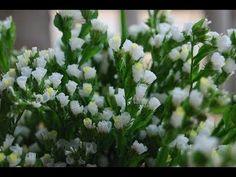 Como hacer flores de papel muy facil - Flores de papel crepe de tejido - YouTube