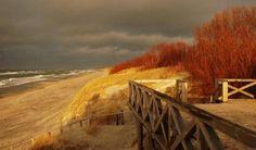 Autumn at the Beach