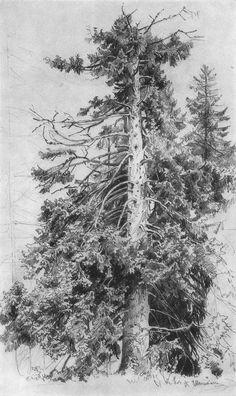 рисунок карандашом лес: 20 тыс изображений найдено в Яндекс.Картинках