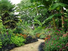 """""""By Stargoose And Hanglands"""": Gardens"""