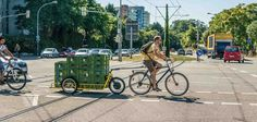 bicycle trailer for heavy loads