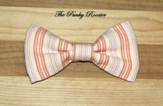 Limited Coral and Aqua Striped Bow Tie Clip on by ThePunkyRooster