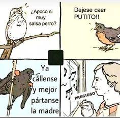 Esos pájaros han de ser de aquí en México :v English Memes, Spanish Memes, New Memes, Funny Memes, Hilarious, Funny Videos, Play 1, One Punch Man, Super Funny