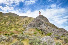 Cape Palliser — the road is long ...