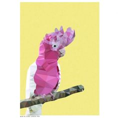 UNDER $25: Geometric galah art print. Shop now at www.hardtofind.com.au