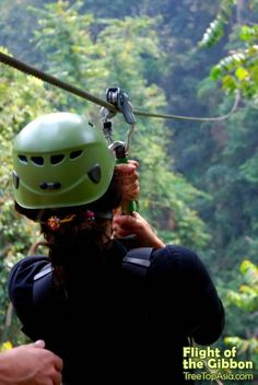 Flight of the Gibbon - Ziplining Jungle Tours in Chiang Mai.