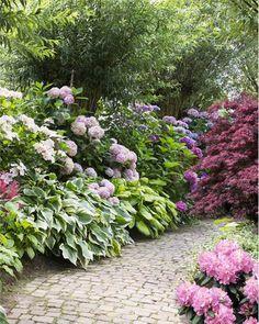 19 Best Ideas For Raised Patio Garden Balconies Patio Shade, Shade Garden, Patio Plants, Garden Plants, Raised Patio, Shade Flowers, Garden Borders, White Gardens, Plantar