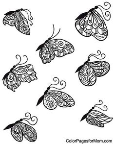 Butterfly Coloring Page 23