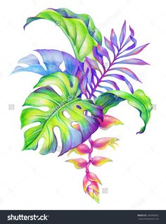 watercolor tropical plants - Recherche Google