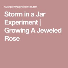 Storm in a Jar Experiment   Growing A Jeweled Rose