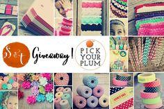Pick Your Plum Craft Deals & $25 Plum Box Giveaway