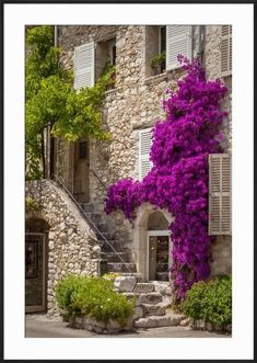 Front entrance of a house in St. Paul de-Vence, France. Framed Photographic Print at Art.com