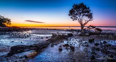 Last Light by Glen Hocking on 500px.. #australia #beach #beautiful #beauty #blue #clouds #color #colorful #green #light #mangrove #morningtonPeninsula #mud #ocean #purple #red #reflections #sea #sky #summer #sun #sunset #tenbypoint #tree #victoria #water #westernport bay #wood #yellow