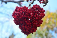 Happy Valentines day! С днем Святого Валентина Joyeuse saint Valentin Feliz día de San Valentín