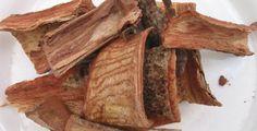Árbol de cuachalalate ideal para combatir la gastritis   Salud180