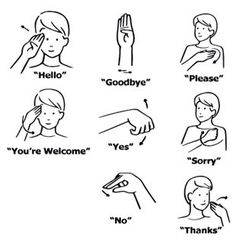 The letters of the alphabet in American Sign Language.You can find Sign language and more on our website.The letters of the alphabet in American Sign Language. Sign Language For Kids, Sign Language Phrases, Sign Language Alphabet, British Sign Language, English Sign Language, Learn Sign Language Free, Deaf Language, Baby Sign Language Chart, Sign Language Dictionary