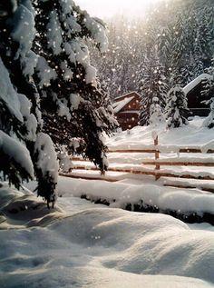 I love snow scenes. Winter Szenen, I Love Winter, Winter Magic, Winter Christmas, Christmas Morning, Country Christmas, Outdoor Christmas, Christmas Photos, Christmas Time