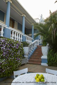 Beautiful gardens to relax in The Blue House Cape Town. The Blue House. Guest House Cape Town. Cape Town Accommodation.