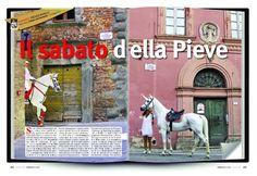Scrivono di noi: da Cavallo Magazine nr.310 2012
