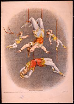 Vintage Poster: Circus 105