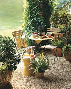 For the patio! A charming pea-gravel breakfast patio furnished with a cafe table, matching chairs, and a sunflower-yellow linen brings to mind alfresco dining in the South of France. A pillow in coordinating fabric adds to the effect. Our ice bucket is made of stacked flowerpots. Edible kumquats underplanted with chartreuse-colored moneywort conjure a relaxed air. The specimens are grown in ceramic containers with an amber glaze. Climb...