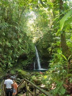 Dominica....BEEN HERE AND REMEMBER THE STAIRWAY DOWN TO SWIM IN FIORD.....WONDERFUL