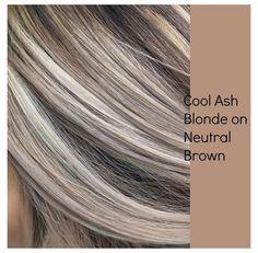 Cool Ash Blonde, Brown Blonde Hair, Platinum Blonde Hair, Brunette Hair, Blonde With Brown Lowlights, Natural Ash Blonde, Blonde Hair Lowlights, Neutral Blonde Hair, Ash Blonde Bob