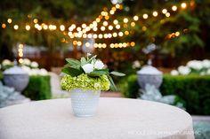 Nicole Dixon Photographic Columbus Ohio Backyard Tent Wedding Decor
