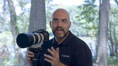 Canon EOS 7D Mark II Auto Focus Guide - Basics of Bird in Flight Photogr...