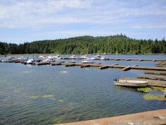 A great little marina at Poet Nook, in Bamfield, BC. Pacific Rim, Poet, Community, River, Places, Outdoor, Outdoors, Pacific Coast, Rivers
