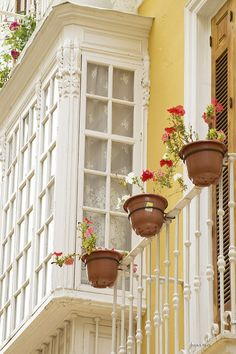 Boxed Windows & Yellow Facade,  Shutters & Balcony & Red Splashes For Contrast - lovely.