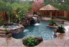 In the near future in my Backyard