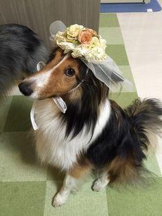 Modeling her pretty bonnet