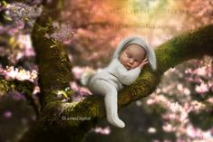 Outstanding baby arrival detail are offered on our site. Read more and you wont be sorry you did. Third Baby, First Baby, Baby Kicking, Magic Forest, Digital Backdrops, After Baby, Baby Arrival, Pregnant Mom, First Time Moms