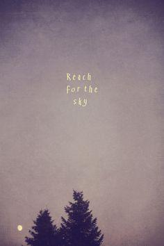 Reach for the Sky © Christine Hall