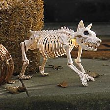 sparky the skeleton dog on leash halloween prop spooky scary outdoor bones new