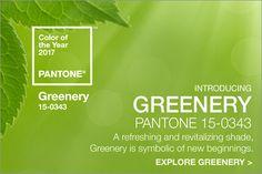 2017年のトレンドカラーをPantoneが発表!始まりを象徴するフレッシュなグリーン「Greenery」