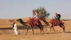 Dubai Desert Safari Tours -- https://medium.com/@PlatinumHeritage/top-5-dubai-desert-safari-tours-to-remember-7951a8fbf785