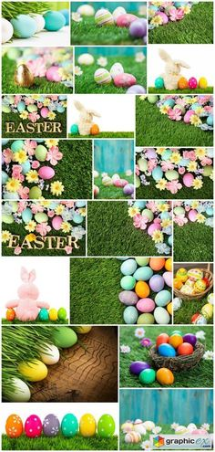 Colorful Easter eggs on grass with flowers background 22X JPEG  stock images