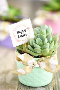 Mason Jar Succulent Planter: Instead of using flowers, decorate your Easter lunch table with potted succulents. Click through for more Easter party ideas and decorations that your kids and family will love.