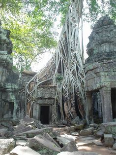 Angkor Wat in Cambodia | Stunning Places #Places
