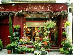 """This is mentioned as a """"typical"""" flower shop"""