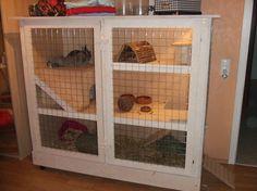 Perrine 160 Baubericht Kaninchenstall Vanessa 5