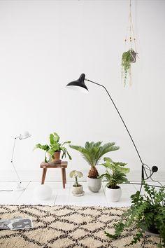Pretty hanging plant braided holder